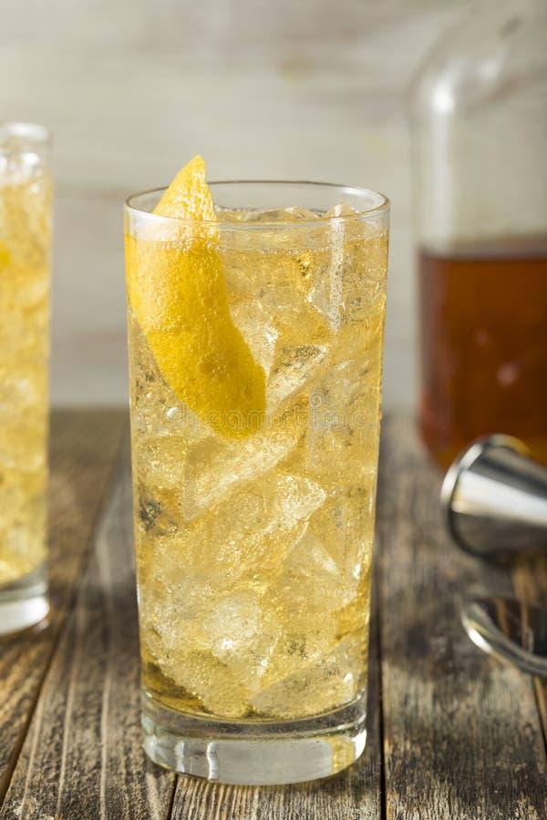 与苏打水的自创威士忌酒Highball 库存照片