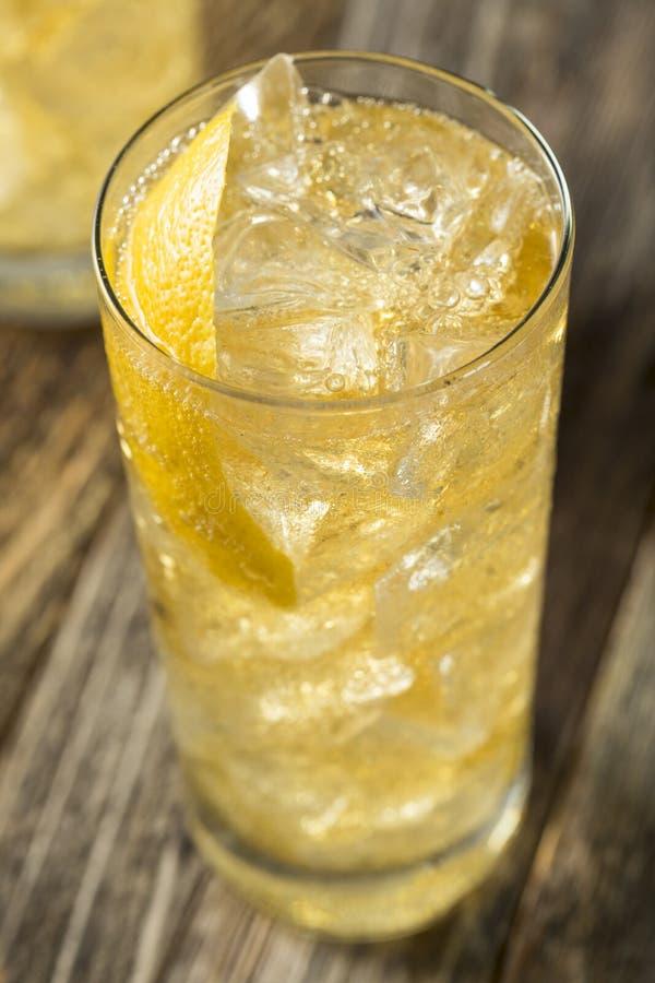 与苏打水的自创威士忌酒Highball 库存图片
