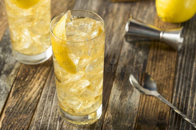 与苏打水的自创威士忌酒Highball 免版税图库摄影