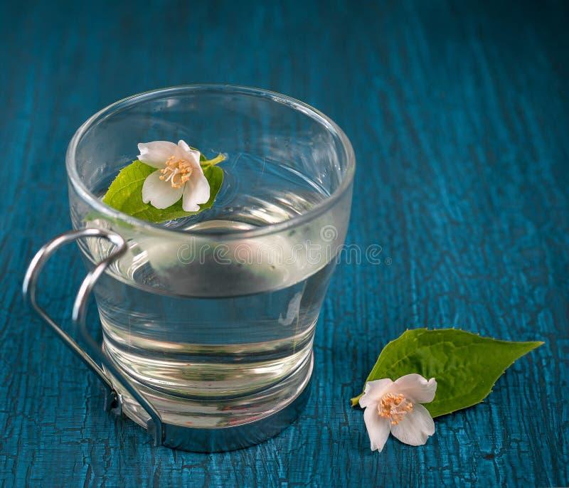 与茉莉花的清凉茶 免版税库存照片