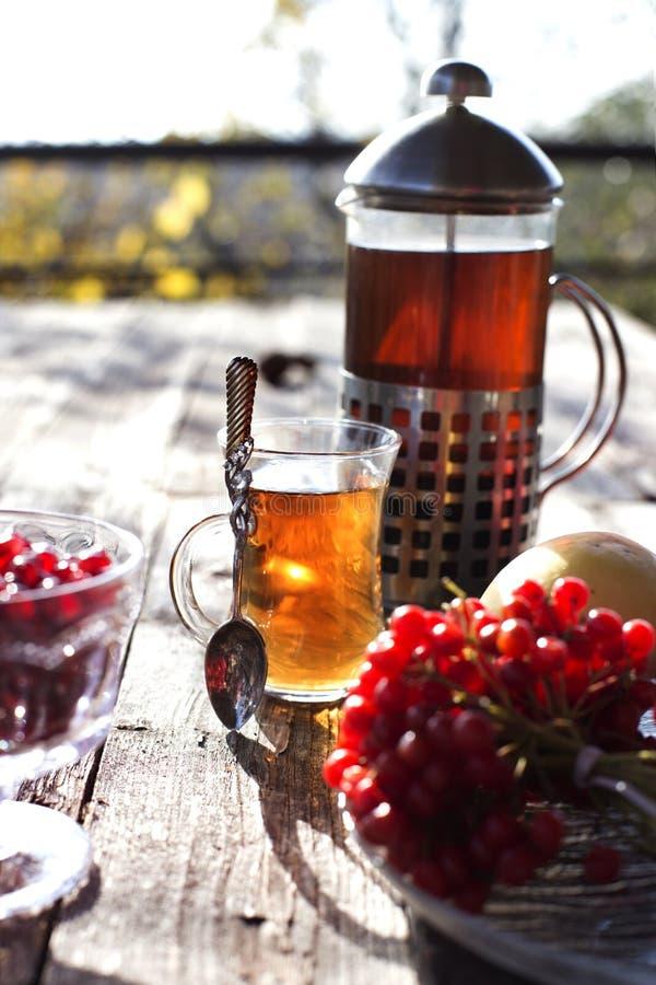 与茶杯的秋天静物画在木板条和迷离树o 免版税图库摄影