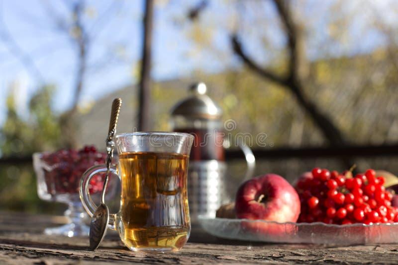 与茶杯的秋天静物画在木板条和迷离树o 免版税库存照片