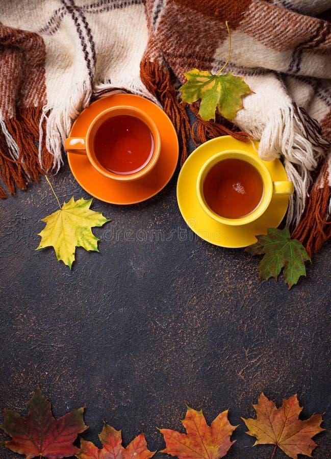 与茶的秋天背景、格子花呢披肩和叶子 库存照片