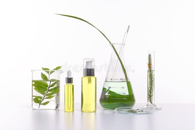与草本成份的自然秀丽化妆用品产品,特写镜头 库存照片