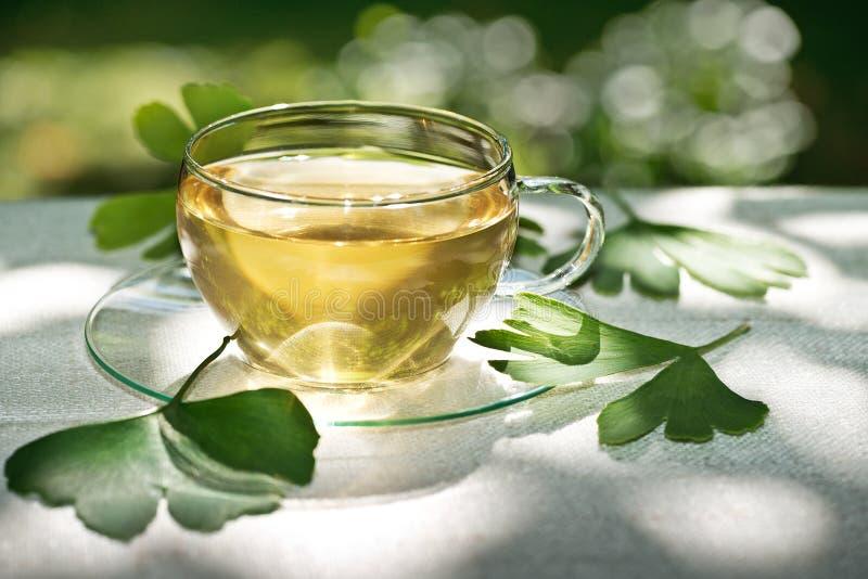 与草本植物的茶 库存照片
