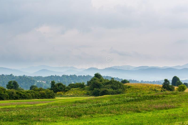 与草甸和小山的美好的风景 免版税图库摄影