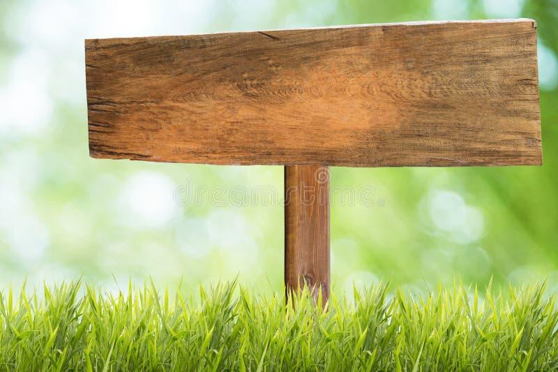 与草甸和草地背景的木牌 库存照片