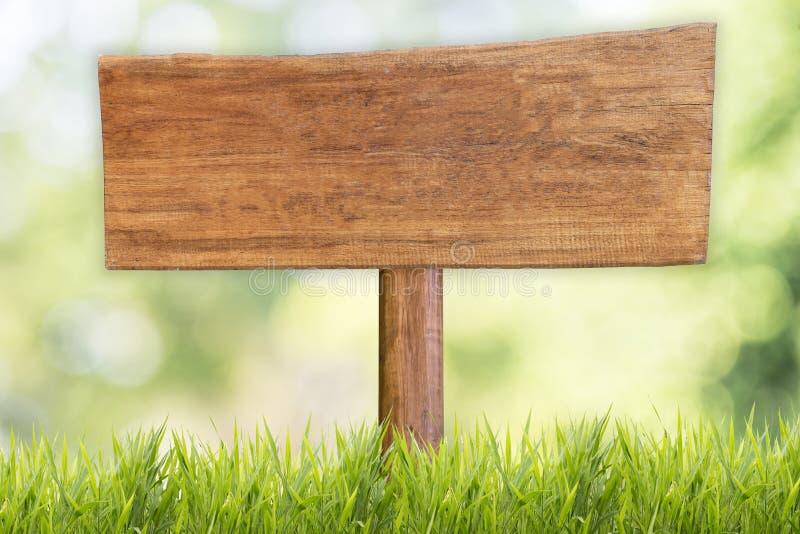 与草甸和草地背景的木牌 库存图片