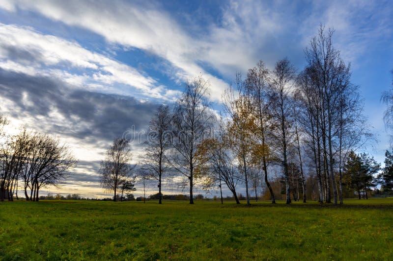 与草甸树和平衡天空的秋天风景 免版税库存照片