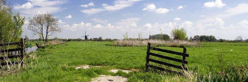 与草甸的典型的荷兰风景,木篱芭,磨房,绿草,蓝天,白色云彩 免版税库存照片