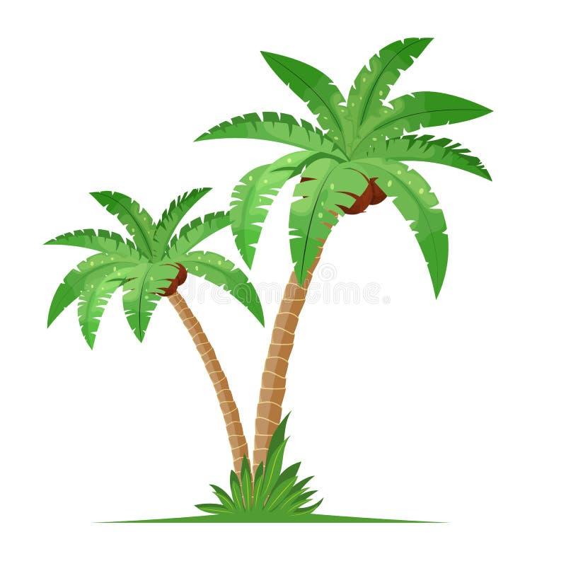 与草的两棵可可椰子树 向量例证