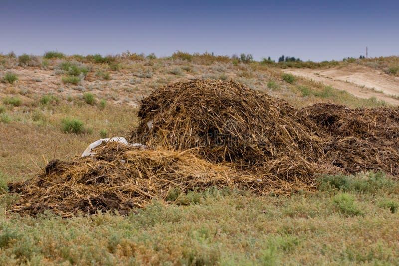 与草的腐植质肥料 图库摄影