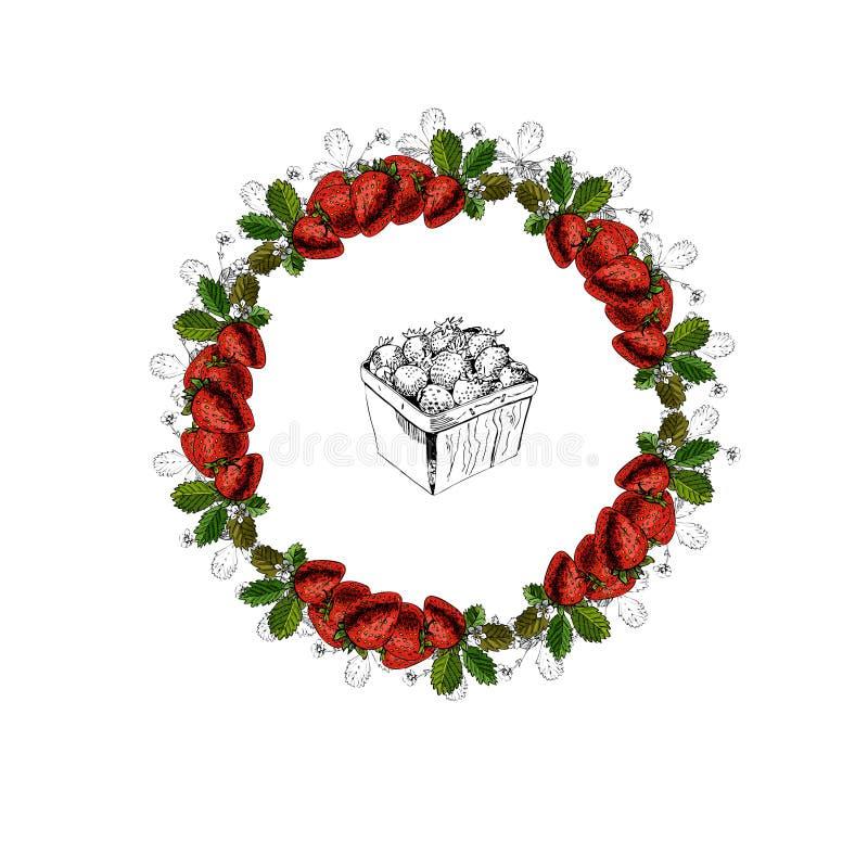 与草莓花圈和篮子的手拉的色的剪影  皇族释放例证