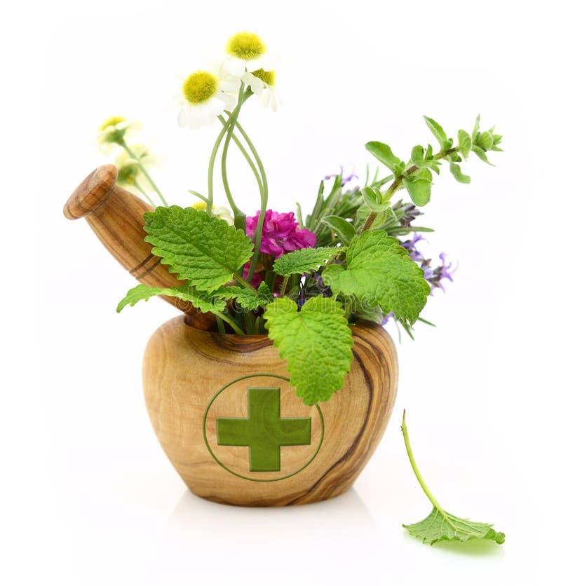 与药房十字架和新鲜的草本的木灰浆 库存照片