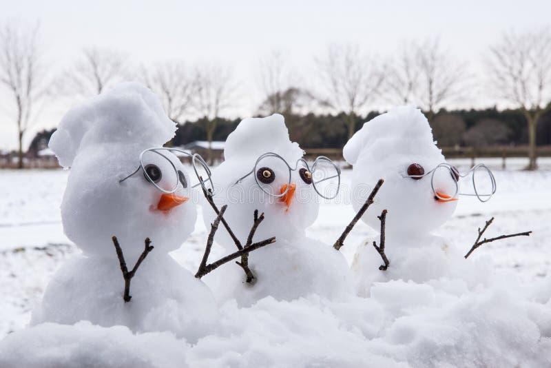 与莫希干人的三个逗人喜爱的雪人字符 库存图片