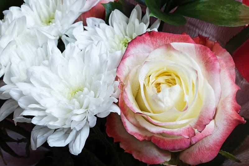 与菊花的花束和上升了 免版税图库摄影