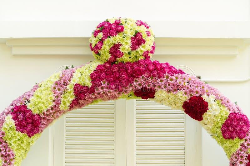 与菊花花装饰的康乃馨 库存照片