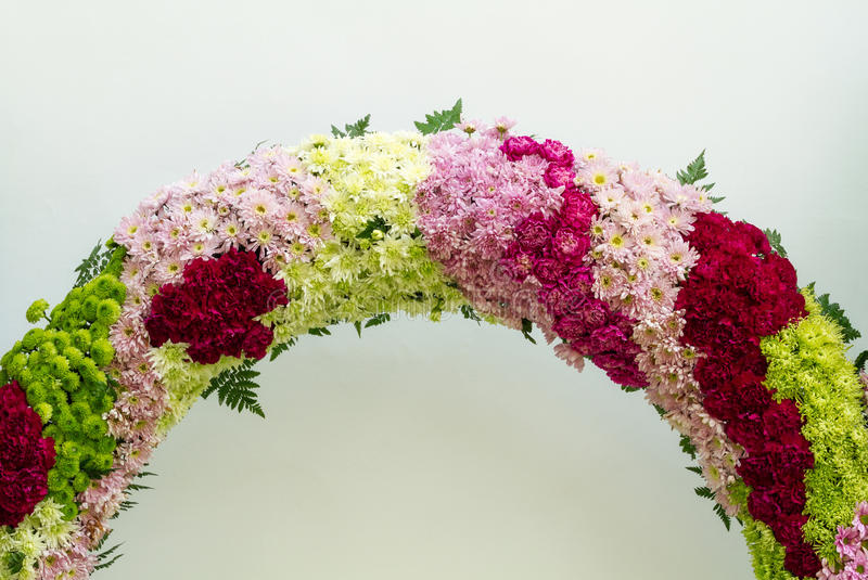 与菊花花装饰的康乃馨 免版税库存照片
