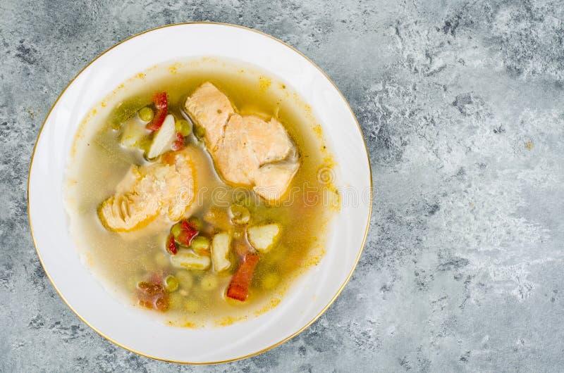 与菜和三文鱼的鱼汤在灰色背景的白色板材 免版税库存图片