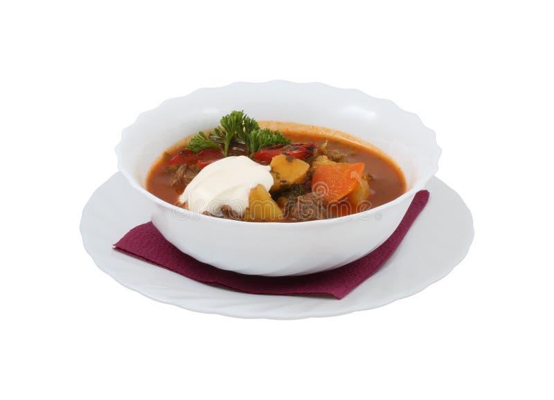 与菜和肉的匈牙利汤 免版税库存照片