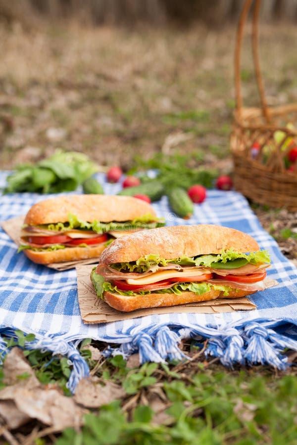 与菜的传统ciabatta长方形宝石三明治生活方式野餐午餐 免版税库存图片