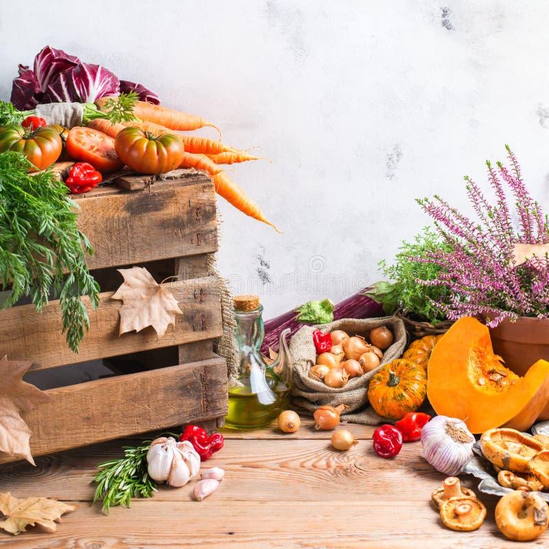 与菜的秋天秋天装饰欢乐感恩背景 图库摄影
