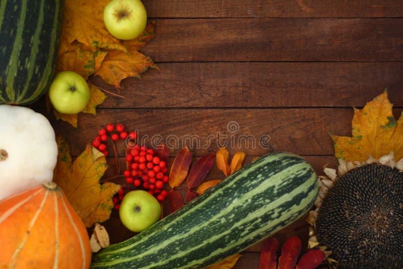 与菜的秋天背景木表面上 库存照片