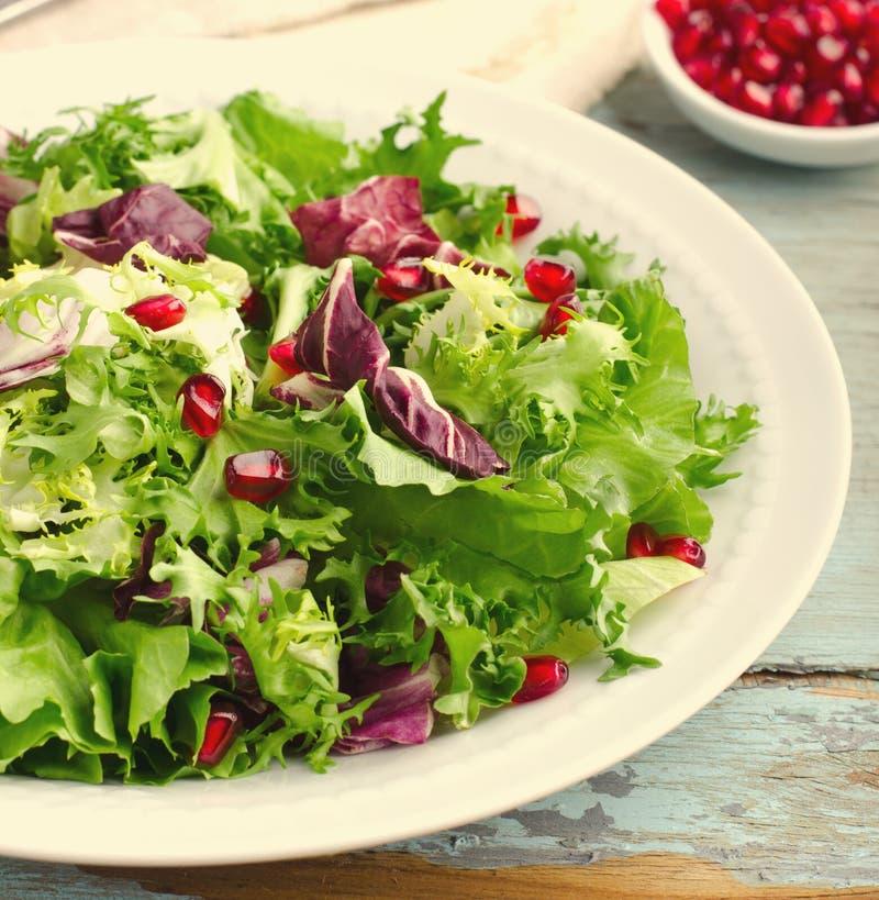 与菠菜、frisee、芝麻菜、拉迪基奥和石榴种子的蔬菜沙拉在蓝色木背景 库存照片