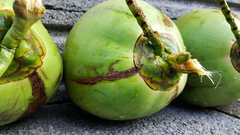 与营养素的年轻绿色椰子,保健福利,饮食小谎 库存照片