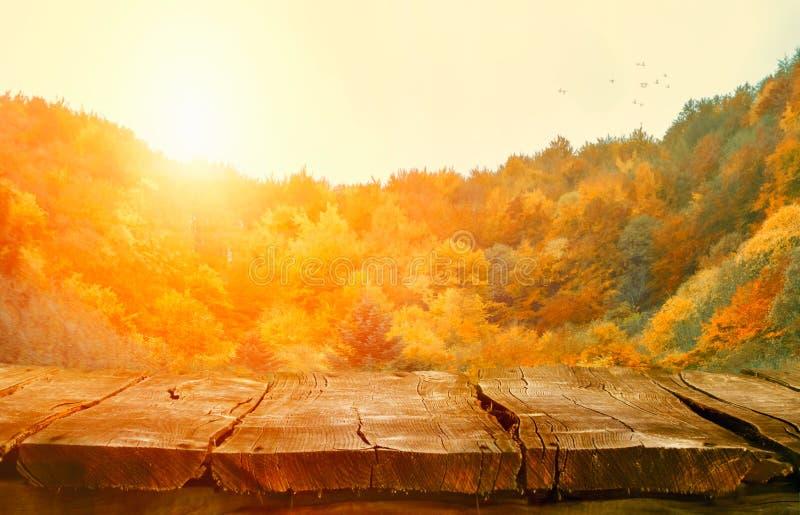 与落的叶子的桌面 与森林表的秋天桌 库存图片