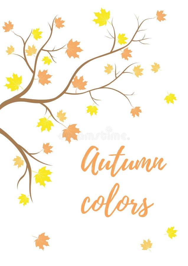 与落的叶子的秋天分支 免版税库存图片