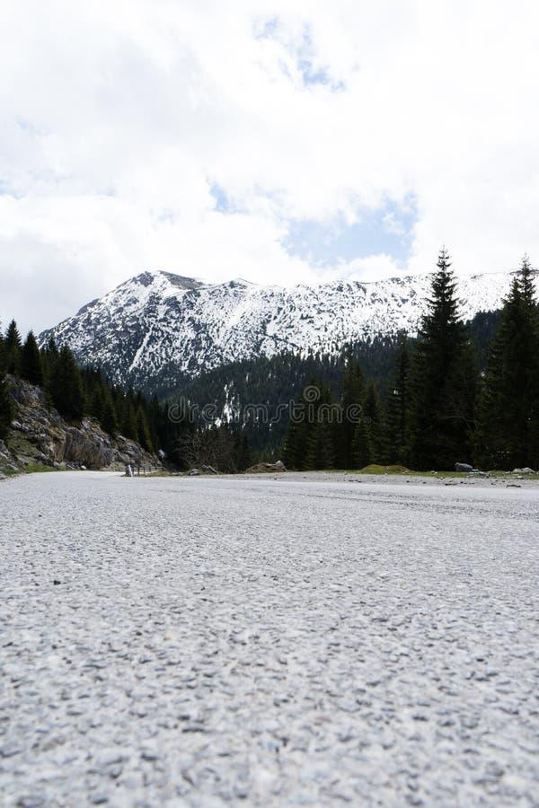 与落矶山脉的壮观的风景从柏油路 黑山雪峰顶的森林 库存照片