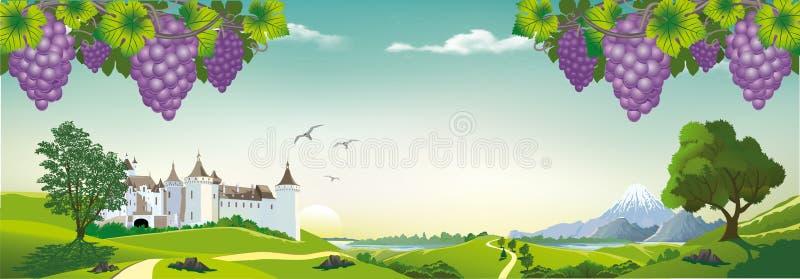 与葡萄和一座古老城堡的现实风景在小山 库存例证