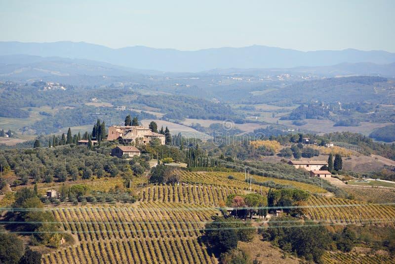 与葡萄园和房子的全景横幅风景意大利的,欧洲 免版税库存照片