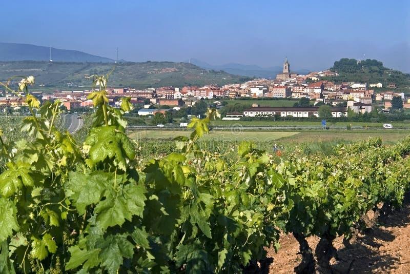 与葡萄园的村庄视图农村风景的 库存图片