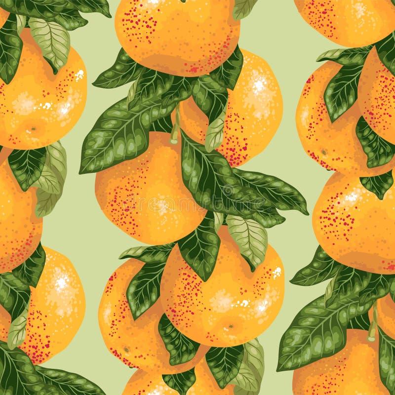 与葡萄柚分支的无缝的样式在传染媒介 库存例证