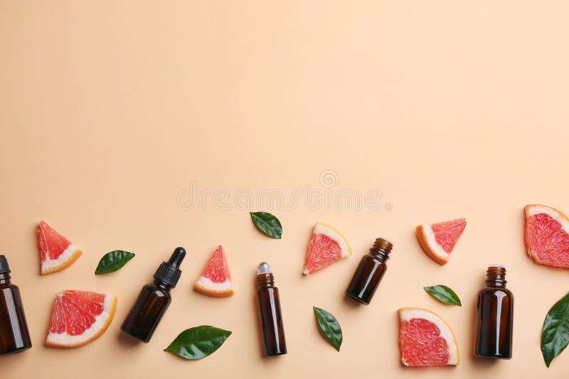 与葡萄柚切片和瓶的平的被放置的构成在颜色背景的精油 图库摄影