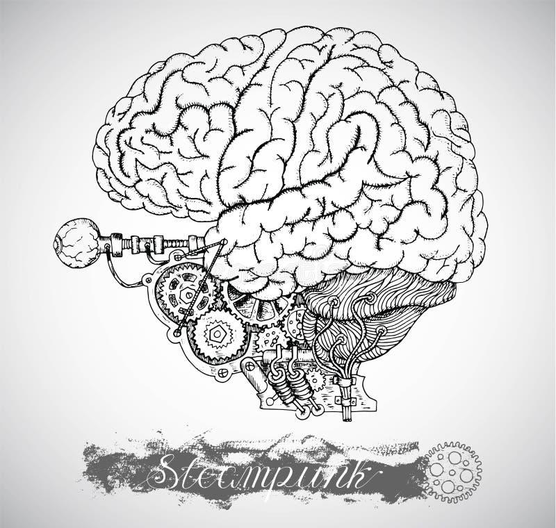 与葡萄酒机制的人的解剖学脑子在steampunk样式 向量例证