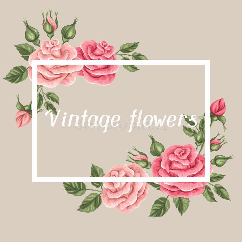 与葡萄酒玫瑰的背景 装饰减速火箭的花 婚姻的邀请的,浪漫卡片,小册子图象 向量例证