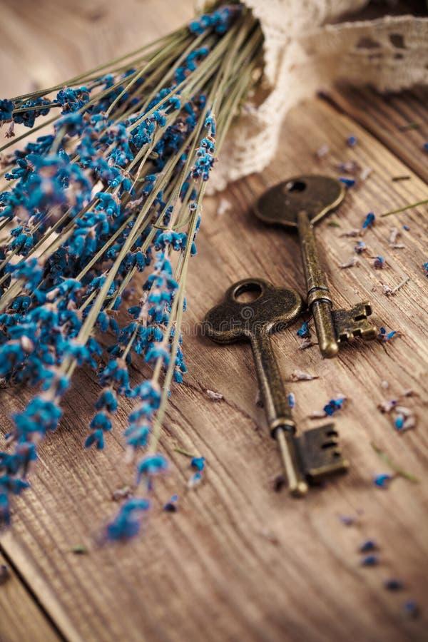 与葡萄酒钥匙的淡紫色 库存照片