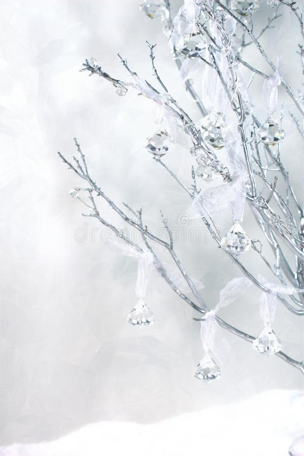 与葡萄酒水晶和雪的Manzanita 免版税库存照片