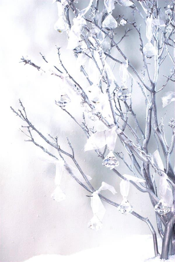 与葡萄酒水晶的Manzanita设色了背景 免版税库存照片