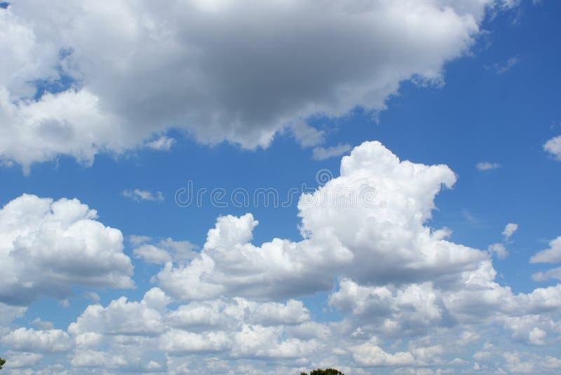与蓝天和白色和灰色云彩的一条地平线 免版税库存图片