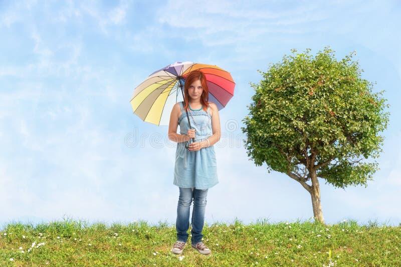与蓝天和绿草的树 免版税库存照片