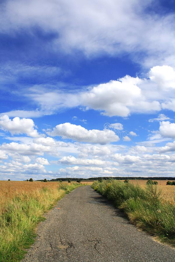 与蓝天的夏天自然 免版税图库摄影