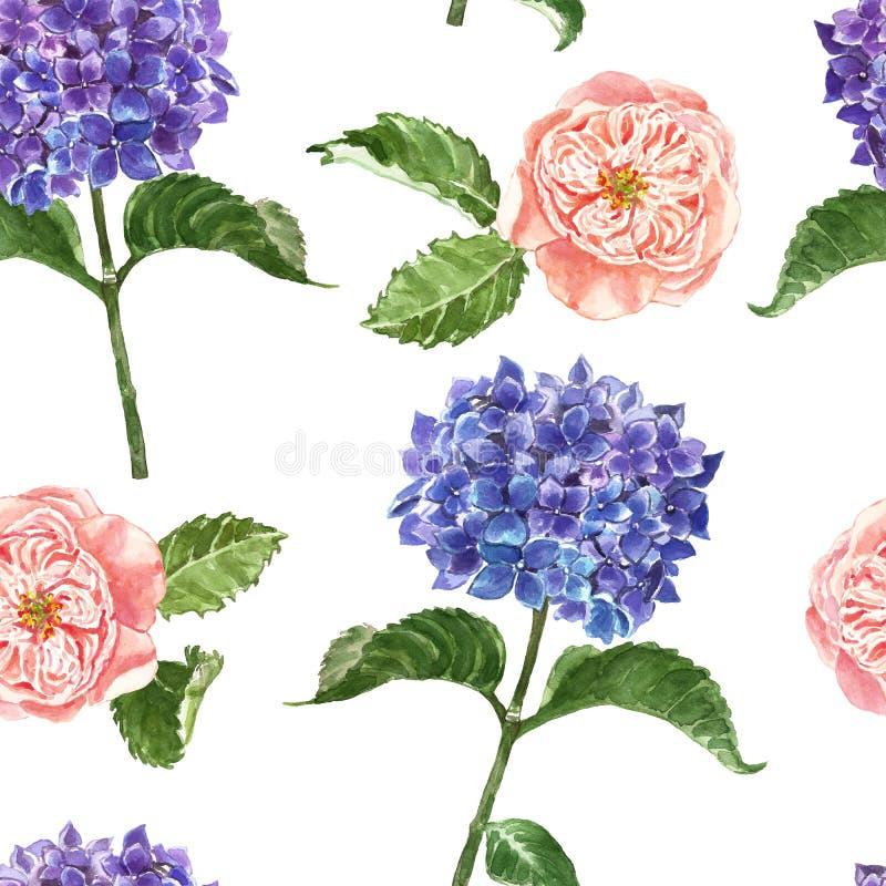 与蓝色八仙花属的水彩花卉无缝的样式和脸红在白色背景的桃红色玫瑰 夏天庭院印刷品 向量例证