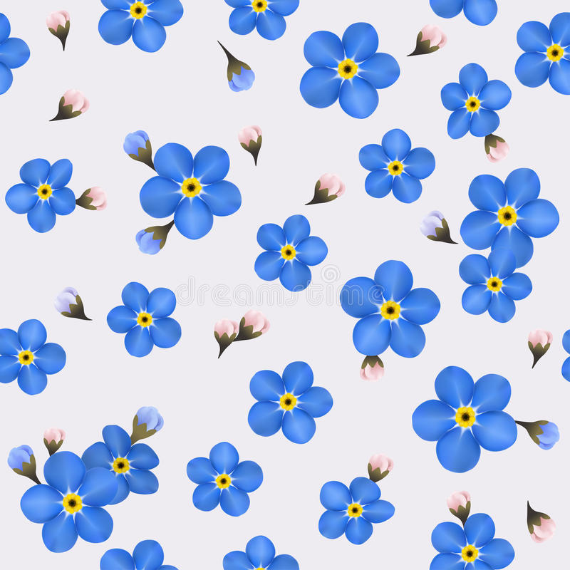与蓝色勿忘草的夏天无缝的样式 库存例证