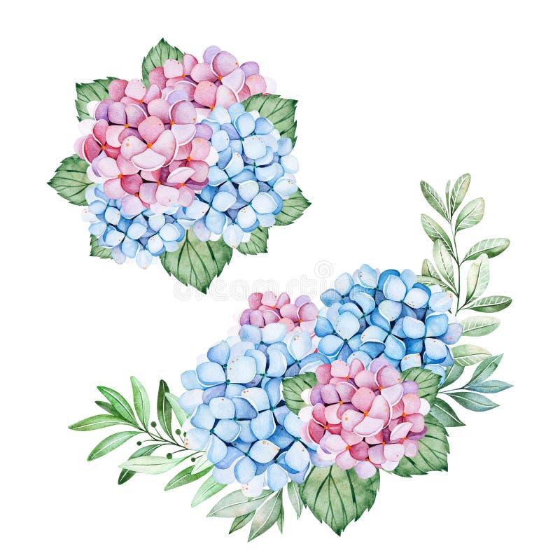 与蓝色和紫色八仙花属花、分支和叶子的2可爱的花束 库存例证