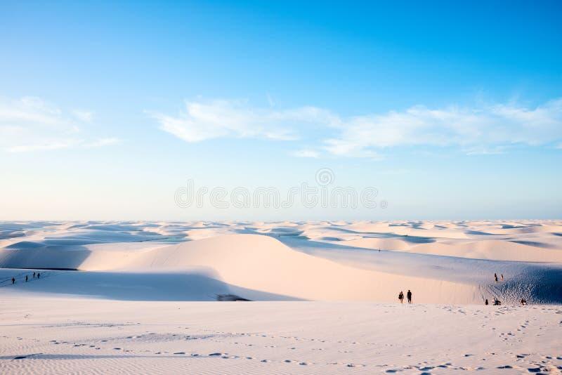 与蓝色和绿色盐水湖的沙丘在Lencois,巴西 库存图片