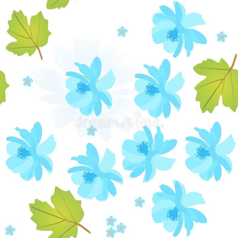 与蓝色波斯菊的无缝的自然样式和忘记我不是花,在白色背景的荚莲属的植物叶子 春天传染媒介设计 向量例证